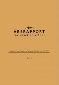 aarsrapport-udsatte_2013_forside