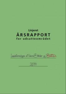 aarsrapport-udsatte_2014_forside